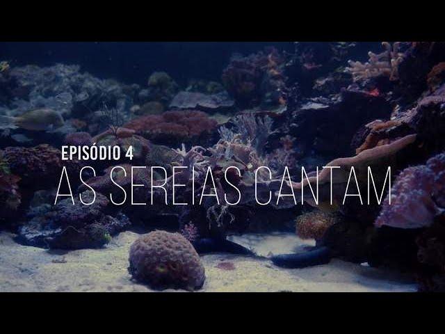 AS 6 FACES DOS BARBAPAPAS - EP4. AS SEREIAS CANTAM
