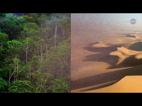 Desert Dust Feeds Amazon Forests - Science at NASA