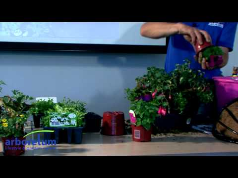 We'll Show You How - Hanging Baskets - Made Easy
