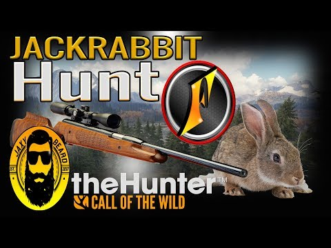 Jackrabbit Hunt With Flinter In TheHunter Call Of The Wild! Live Stream