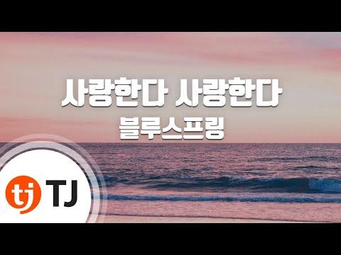 [TJ노래방] 사랑한다사랑한다 - 블루스프링 / TJ Karaoke
