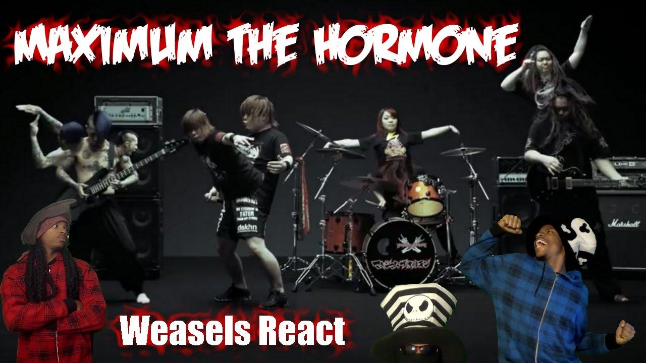 Maximum The Hormone