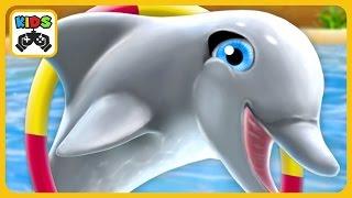Выступает дельфин в игре для детей My Dolphin Show от Spil Games * iOS | Android