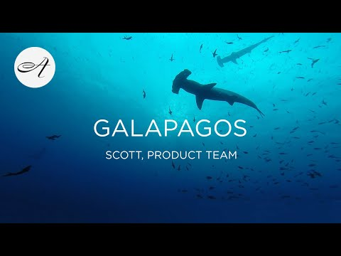 My travels in The Galapagos with Audley Travel