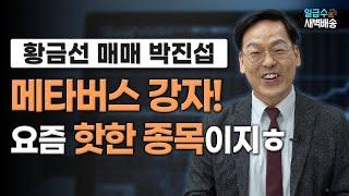 [일급수 새벽배송] 메타버스 강자! 요즘 핫한 종목이지ㅎ / 일급수 새벽배송