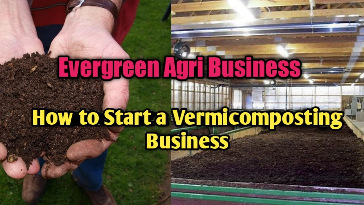Evergreen Agri Business | How to Start a Vermicompost Business