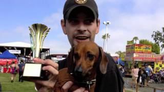 Oc Pet Expo - Dachshund Races