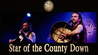 Watch Rapalje Star Of The County Down video