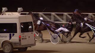 Vidéo de la course PMU PREMI LUCANA