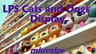 Display For My LPS Cats and Dogs!