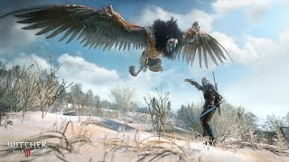 "The Witcher 3: Wild Hunt ""Death March"" Impressions & Tips"