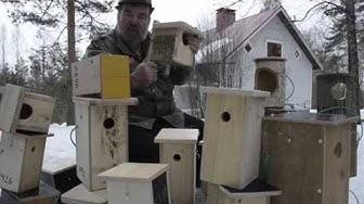 Eri linnuille erilaiset pöntöt