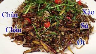 """Châu Chấu Xào Sả Ớt - """" Stir-fried Grasshopper with Lemongrass and Chili """""""