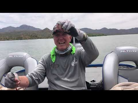 Bartlett Lake Fishing  Report - April 30, 2020