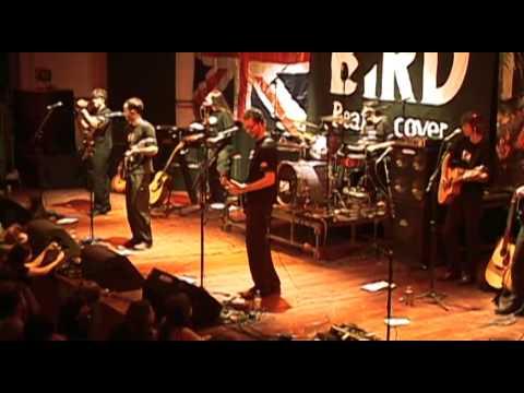 Black Bird Band - Hey Bulldog