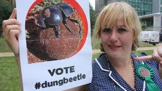Ugly animal vote - Flightless dung beetle (Sarah Bennetto)