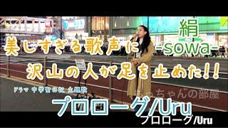 美しすぎる歌声に沢山の人が立ち止まった!プロローグ/Uru【ドラマ 中学聖日記 主題歌】絹-sowa