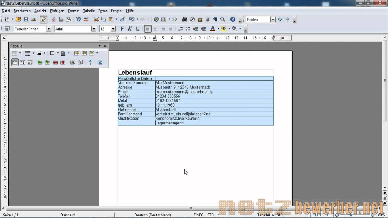 Lebenslauf in Open Office - YouTube