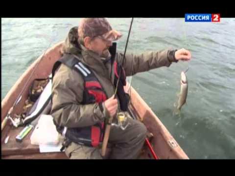 Любительское рыболовство. Озеро Сенеж