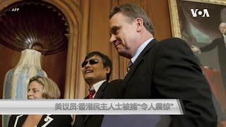 """美议员:香港民主人士被捕""""令人震惊"""""""
