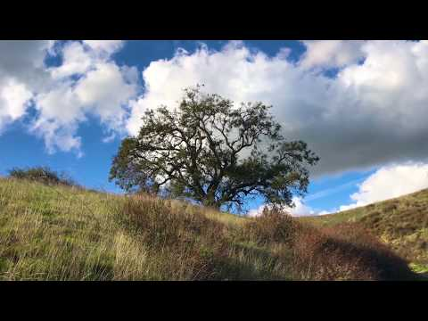 "Peaceful music, Relaxing music, Instruemental Music ""Hills of Peace""by Tim Janis"