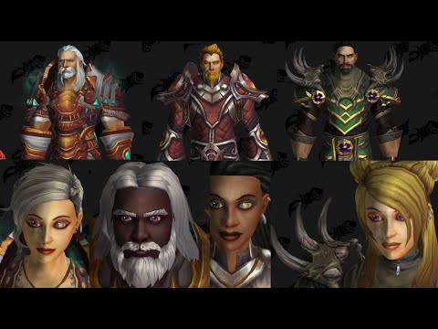 wow-shadowlands-new-human-customizations-with-armor