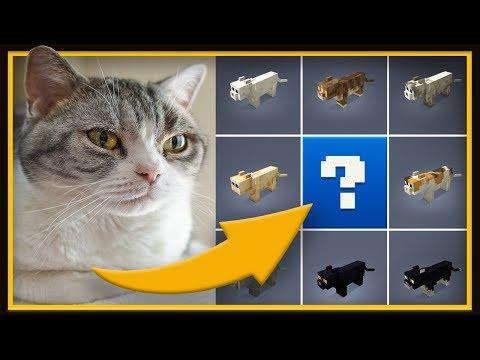 Is stampy cat hookup sqaishey skin xbox