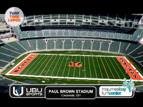 Paul Brown Stadium -Cincinnati Bengals field installation - YouTube
