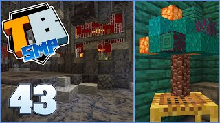 Submit your House!! | Truly Bedrock Season 2 Episode 43 | Minecraft Bedrock Edition