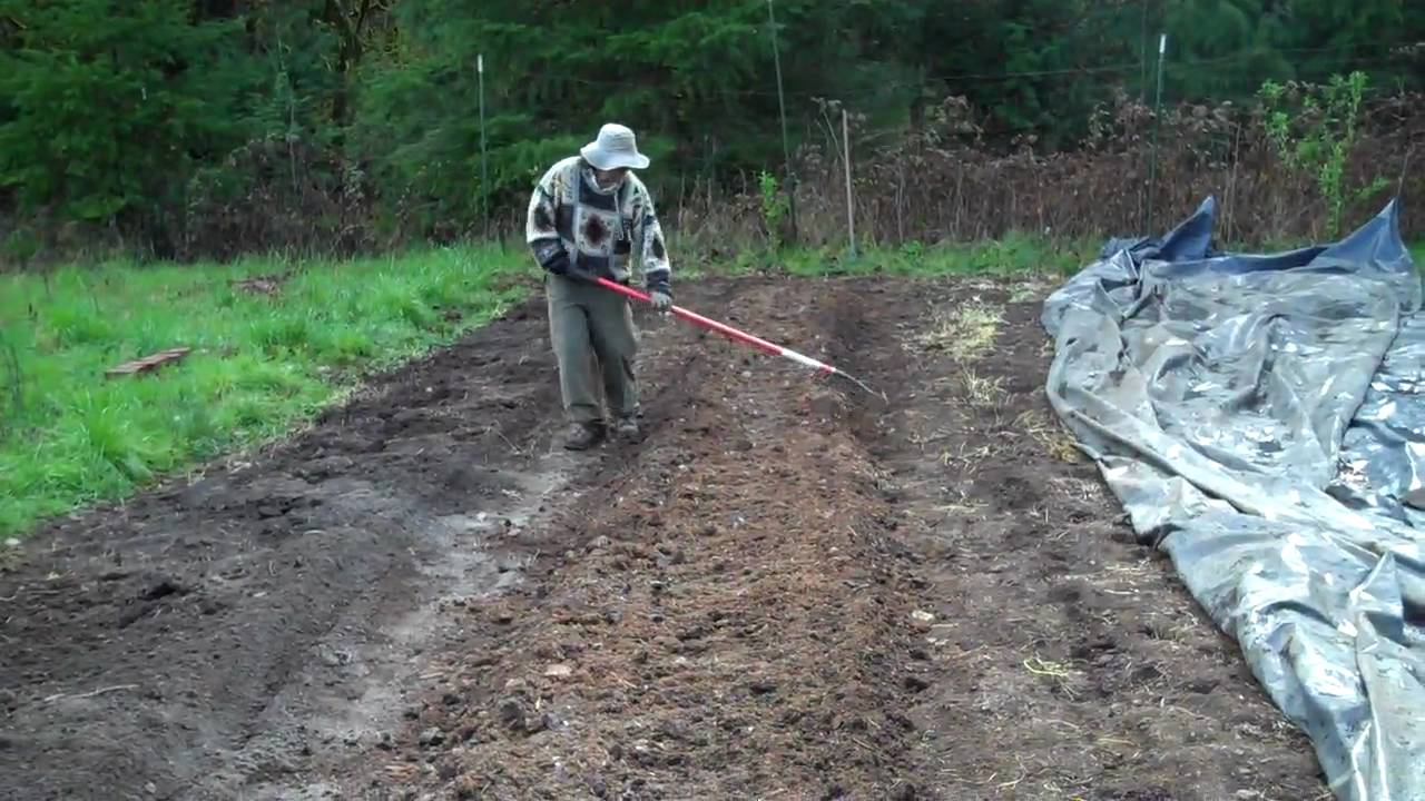 Bed Preparation Shaping Of Loosened Soil Into A Well
