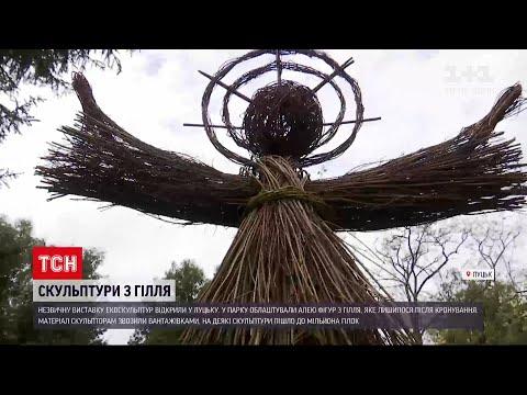ТСН: у Луцьку відкрили виставку фігур з обрізаних гілок