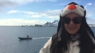 antarctica the trip of a lifetime