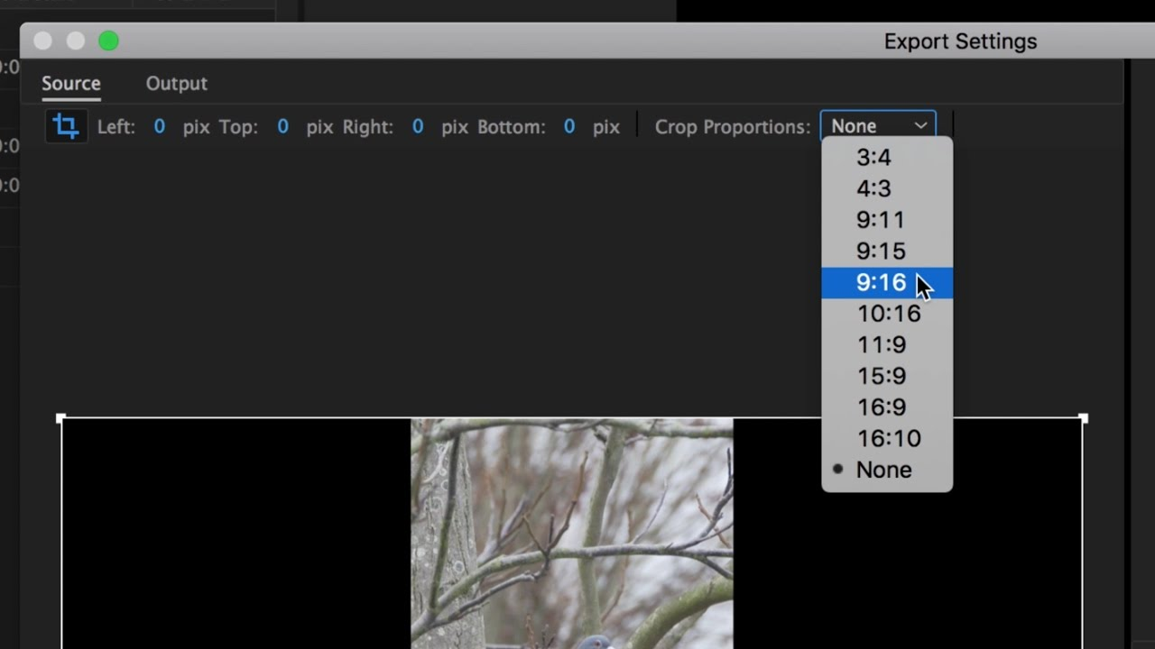 Set up and Export a Vertical Video from 16:9 Footage - Adobe Premiere Pro -  Workaround Workflow
