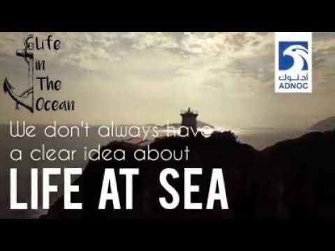 Marine short activity film...