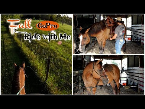 My Horse's 2nd Ride! GoPro Ride With Me Barn Vlog
