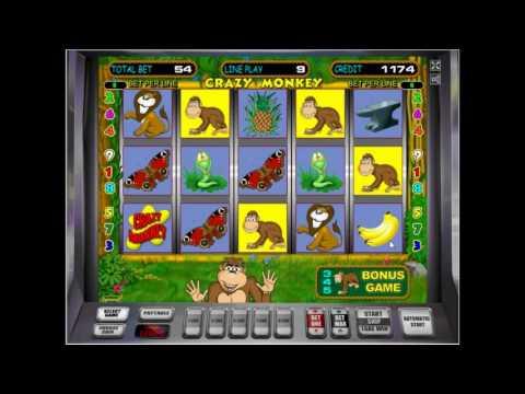 Sonesta beach resort casino 5