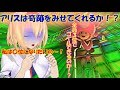 【ゆっくりマリオカート実況】私は〇位になりたいのぉぉぉぉ!