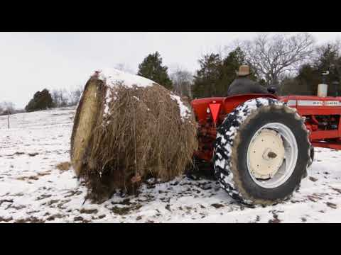 Radio Bristol Farm Report - Miller Hill Farm