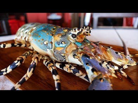 Indonesian Street Food - GIANT RAINBOW LOBSTER Sashimi Manado Seafood Indonesia