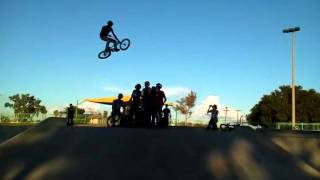 Bryan Hawns four wall reed skatepark