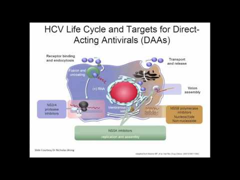 IFN Free HCV Therapies Update on Current Management with Dr Mark Hull