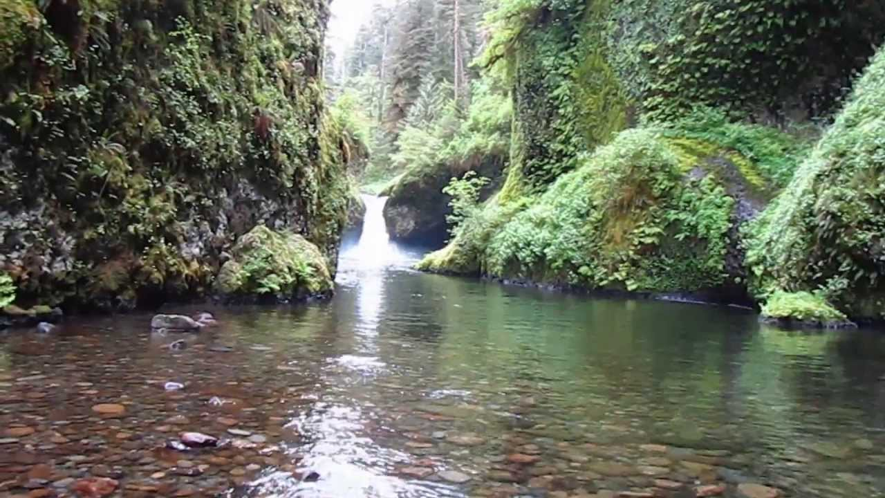 metlako and punchbowl falls hike - columbia river gorge - youtube