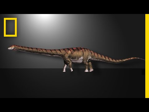 This Is the Biggest Dinosaur Ever Found | National Geographic