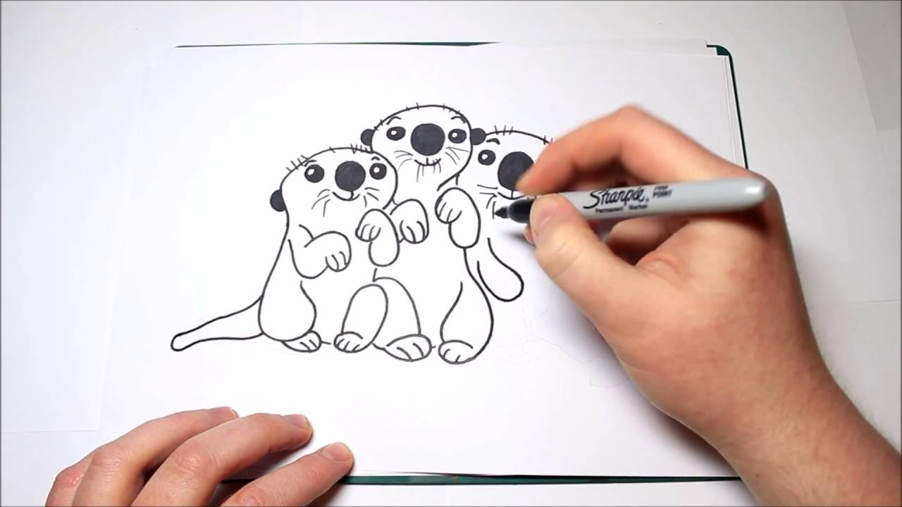 281aad626f85d How To Draw The Otters From Finding Dory For Kids - YouTube