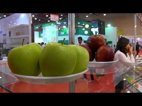 Food Africa 2015 exhibition kicks off in Cairo for four days