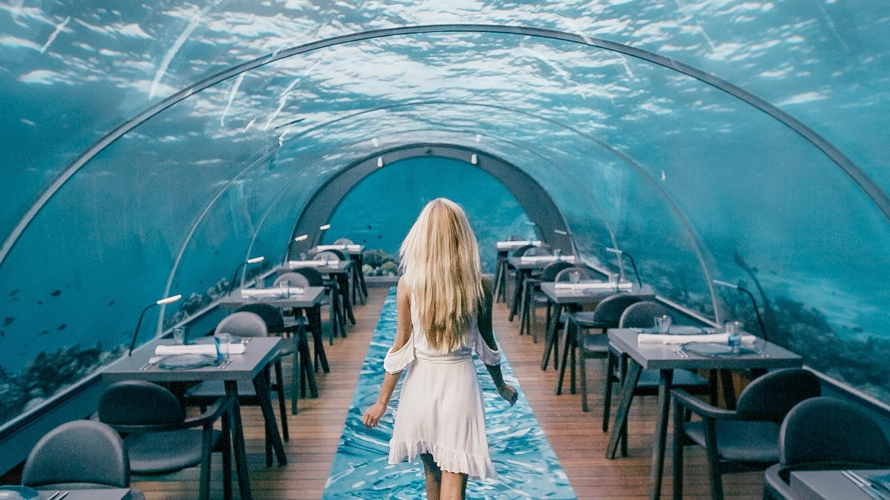 underwater restaurant disney world. MALDIVES DAY 1 | WORLD BIGGEST UNDERWATER RESTAURANT AT A 5 STAR RESORT Underwater Restaurant Disney World