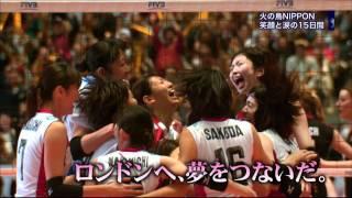 女子ワールドカップバレー2011 火の鳥NIPPON笑顔と涙の15日間