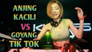 DJ ANJING KACILI VS GOYANG TIK TOK 2018