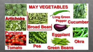 May Let's Learn Vegetables! Fun Puzzle! Little Kids Channel#LearnVegetables
