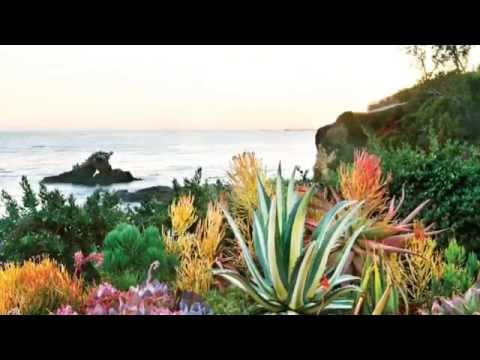 Take a Peek Into Western Garden Book of Landscaping | Sunset - YouTube